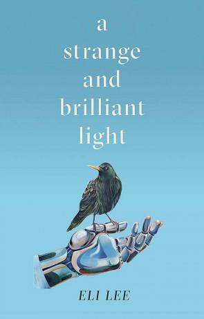 A Strange and Brilliant Light, a novel by Eli Lee