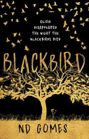 Blackbird, a novel by ND Gomes