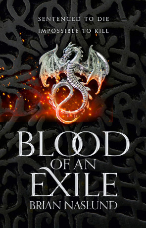 Blood of an exile, a novel by Brian Naslund