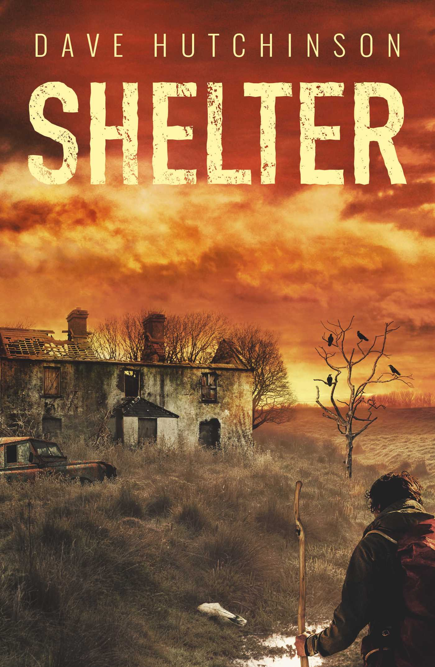 Shelter, a novel by Dave Hutchinson