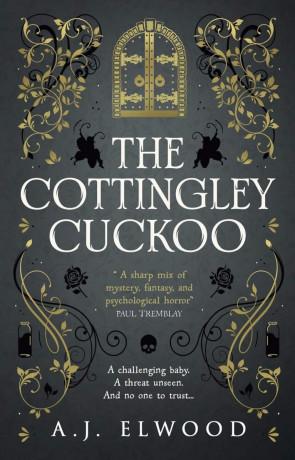 The Cottingley Cuckoo, a novel by A J Elwood