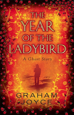 The Year of the Ladybird, a novel by Graham Joyce